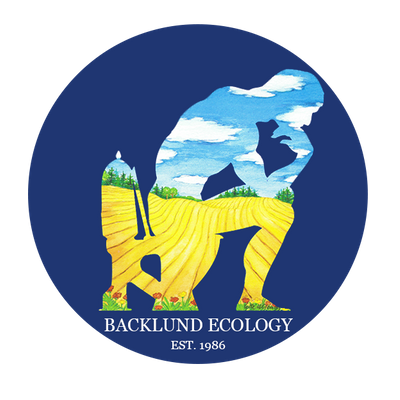 BACKLUND ECOLOGY